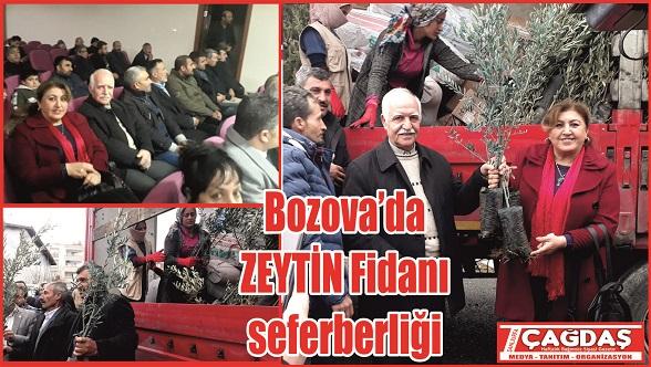 23 Bin Zeytin Fidanı dağıtıldı