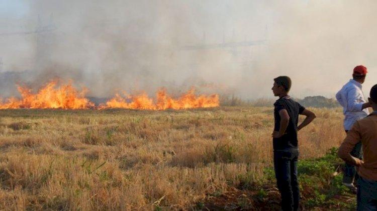Hasat zamanı anız yangınlarına dikkat!