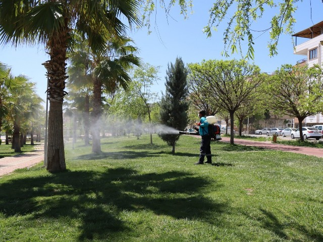 Huzurlu Bir Yaz Mevsimi İçin Vektörle Kesintisiz Mücadele