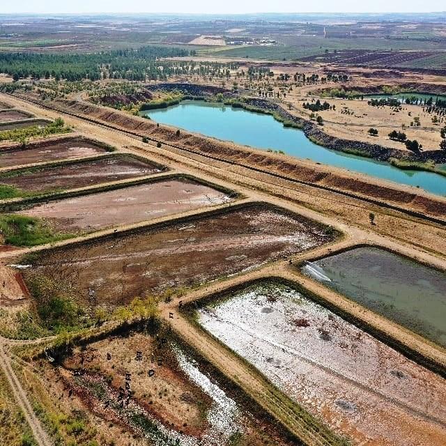 Urfa'da Ortadoğunun en büyük balık üretim istasyonu