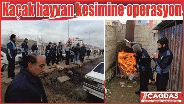 Viranşehir'de sağlık Tacirlerine Operasyon