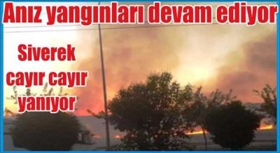Anız yangınları devam ediyor