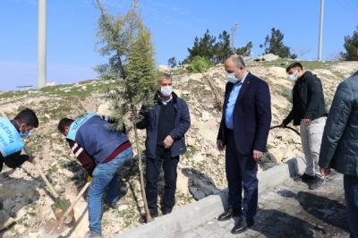 Başkan Suphi Aksoy'dan Ağaç Dikim Seferberliği