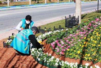 Doğanın harika renkleri, Eyyübiye'de toprakla buluşuyor.
