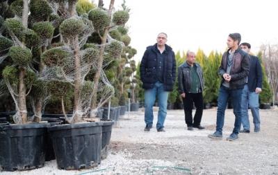 Eyyübiye'deki parklara farklı türlerde yeni ağaçlar dikilecek.