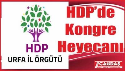 HDP kongre çalışmalarına hız verdi