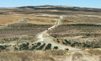Şanlıurfa'da sulama inşaatları devam ediyor