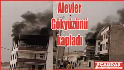 Şanlıurfa'da yangın korkuttu