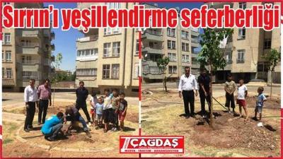 Sırrın'da Yeşillendirme ve Ağaçlandırma Projesi
